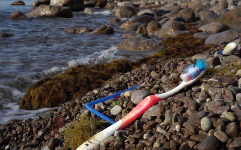 Toothbrush on shoreline